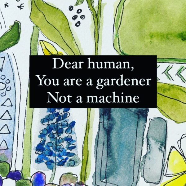 watercolor plants background with the words Dear Human You are a gardener not a machine over the top.